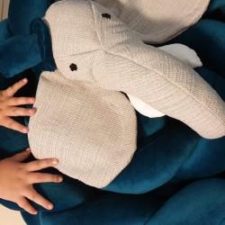 Elephant 3d Head Grey